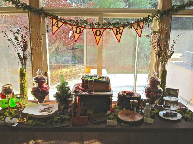 "Adora had a giant storybook cake and all the fairytale treats you could imagine. Aunt Tricia made the ""Adora"" banner. She is so crafty!"
